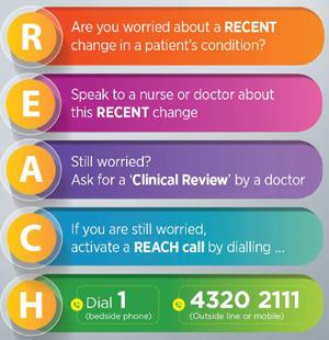 REACH Information